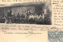 SAINT-TROJAN-les-BAINS : Detroquage D'huitres - Tres Bon Etat - Andere Gemeenten