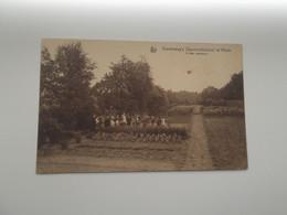 HEIDE / KALMTHOUT: Diesterweg's Openluchtschool - In De Moestuin - Kalmthout
