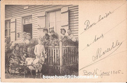 62 Berck Janv 1905 Carte Photo Attelage Chevre Goat Cart - Berck
