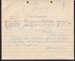 """1903 - Vordruck-Formular """"Heliograph Der Schutztruppe"""" - Gebraucht Nach Windhuk - Colony: German South West Africa"""