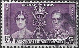 NEWFOUNDLAND 1937 Coronation - 5c - Purple AVU - 1908-1947