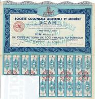 Titre Ancien - Sté Coloniale Agricole Et Minière SCAM - Titre N° 05.137 - Africa