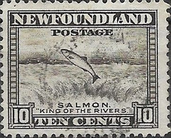 NEWFOUNDLAND 1932 Salmon - 10c - Brown FU - 1908-1947
