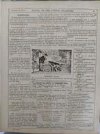 Punch, Or The London Charivari Vol CXLVI - JANUARY 14, 1914 - ALGERIA. ALGERIE Magazine  20 Pages - Non Classificati