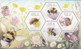 Ireland 2018, Bees, MNH S/S - Ungebraucht