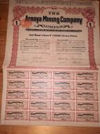 1 ACTION -  THE ARNOYA MINING COMPANY - 1909 - Non Classificati