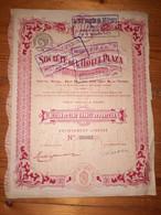 1 ACTION -   Société De L ' HOTEL PLAZA  - 1924 - Non Classificati