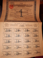 1 ACTION -  HORSEBRO TIN Company  - 1907 - Non Classificati