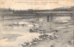 H1505 - MONTLUCON - D03 - Passerelle Des Nicauds Et Pont Du Chemin De Fer --- Le Pont Du Cher Et Le Quartier Des Nicauds - Montlucon