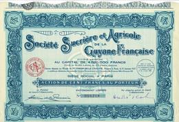 Ancien Titre - Société Sucrière Et Agricole De La Guyane Française  - Société Anonyme - Titre De 1929 - - Agricoltura