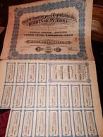 1 ACTION - S.A Pour EXPLOITATION Des DERIVES  Du PETROLE  - ANVERS - Part De Fondateur 1920 - Petrolio