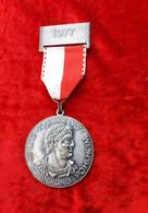 404b * 1. LIMES WANDER-MEDAILLE 1977 * POHLHEIM **!! - Souvenir-Medaille (elongated Coins)