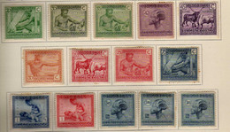 Congo Belge (1925-27) -  Tribus -    Neufs* - MH - 1923-44: Ungebraucht