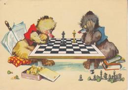 Chiens Jouant Aux échecs - Honden