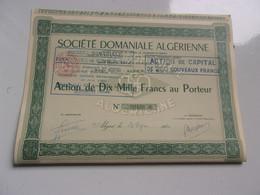 DOMANIALE ALGERIENNE (1962) Alger , Algérie - Unclassified