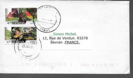 MEXIQUE  Lettre   Oiseaux Perroquets Grenouilles - Perroquets & Tropicaux