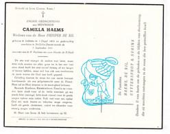 DP Camilla Haems ° Lebbeke 1874 † Sint-Gillis-bij-Dendermonde 1951 X Prosper De Nil / Uyttersprot Surincx - Santini