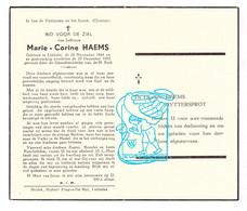 DP Marie Corine Haems ° Lebbeke 1884 † 1955 // Uyttersprot - Santini