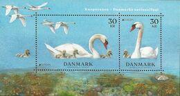 """DINAMARCA /DENMARK /DÄNEMARK /DANMARK -EUROPA 2019 -NATIONAL BIRDS.- """"AVES -BIRDS -VÖGEL-OISEAUX""""-FEUILLE BLOC - 2019"""