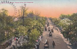 5102) WIEN - PRATER Haupt Allee Mit Riesenrad - Viele Personen Soldat Auf Pferd - Kutschen ALT ! Riesenrad 1911 - Prater