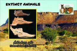 Vignettes De Fantaisie, Extinct Animals : Lagomorpha, Aztlanolagus Agilis - Fantasy Labels