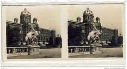 Stereo Photographie - WIEN , Stereoscope - Naturhistorisches Museum, Stereoskopie, Stereoscope - Photos Stéréoscopiques