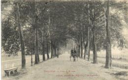 TOULOUSE  Avenue De Brienne Attelage RV - Toulouse