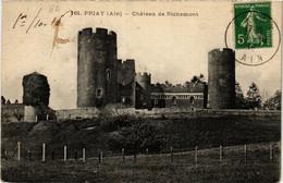 CPA AK PRIAY Chateau De Richemont (684722) - Altri Comuni