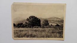 1958 - VIGGIANO (Potenza) - Paesaggio - Altre Città