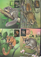 Belarus Weissrussland  MNH ** 2021  1403-06 Fauna. Red Book Rodents Max - Bielorrusia
