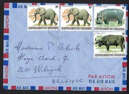 Lettre Par Avion. BURUNDI Vers Belgique.  Eléphants, Hippopotame, Buffle. - Unclassified