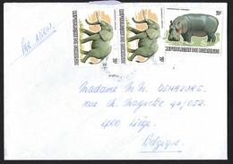 Lettre Par Avion. BURUNDI Vers Belgique.  Eléphants, Hippopotame. - Unclassified