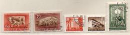 Ungarn 1951 Siehe Bild 5 Marken Gestempelt  Hungary Used - Gebraucht