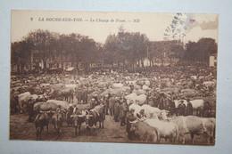 85 : La Roche Sur Yon  - Le Champ De Foire - La Roche Sur Yon