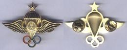 Insigne Du Brevet De Parachutiste - 1 étoile - Arabie Saoudite - Other