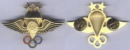 Insigne Du Brevet De Parachutiste - 2 étoiles - Arabie Saoudite - Other