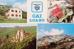Cartolina - CAI Loano - Rifugio Pian Delle Bosse - Primula Marginata - 1970 Ca. - Savona