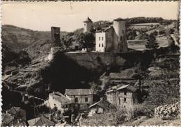 CPM LAROQUEBROU Le Chateau Et Les Gorges De La Cere (1117175) - Autres Communes