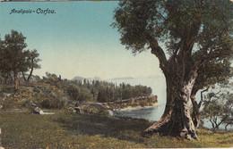 GREECE - Corfou - Analipsis - Greece