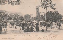 CPA (46) CAHORS Foirail Aux Boeufs Tour Du Pape Jean XXII Foire Bestiaux  2 Scans - Cahors