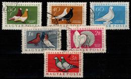 HUNGARY - 1957. Pigeons Cpl.Set (DH3)  USED!! Mi:1505-1510. - Gebraucht