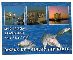 Lot   - Thème - Animaux -  Dauphin -   68 Cartes - 5 - 99 Postkaarten