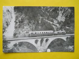 Photo ,TRAMWAY Et Gares Des ALPES MARITIMES ,collection Bourneuf ,lire Descriptif , De Nice à Digne ,cliché Bazin - Trains
