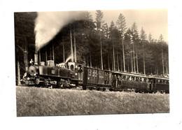 Carte  Train  Harzquerbahn - Treni