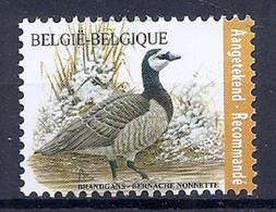 BELGIE * Buzin  2020 * Nr 4912   BRANDGANS * Postfris Xx - 1985-.. Vogels (Buzin)