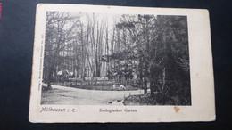 MULHAUSEN  - Zoologischer Garten - Mulhouse