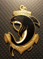21° RIC Troupes De Marine  Email Drago - Marine