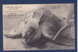 CPA Tortue Turtle Non Circulé Publicité Paris - Turtles