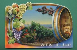 41 Vendome Coteau Du Vendomois Vallée Du Loir ( Vigne, Raisins, Tonneaux, Barrique ) - Vendome