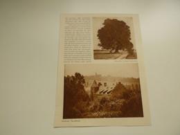 """Origineel Knipsel ( 4083 ) Uit Tijdschrift """" Le Miroir De La Belgique """" 1928 :Baisy -Thy Maransart  Céroux-Mousty Genval - Non Classés"""